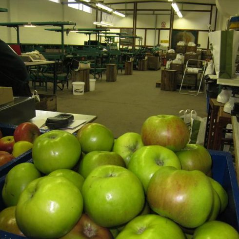 Leckford Apples at the fruit farm store
