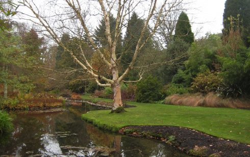 Longstock water gardens belonging to the John Lewis Partnership visited by the Rambling club while staying at Leckford.