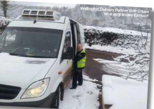 Wellington in the snow