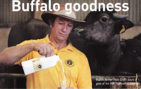 Buffalo milk in Leighton Buzzard