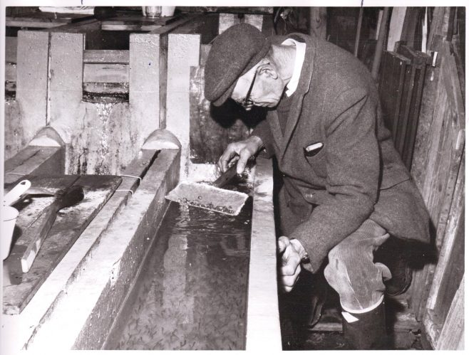Mr Mott 1965, head river keeper at Leckford, in the trout hatchery | C E Wardell