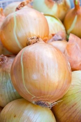close up of onions in market | Image courtesy of tungphoto / FreeDigitalPhotos.net